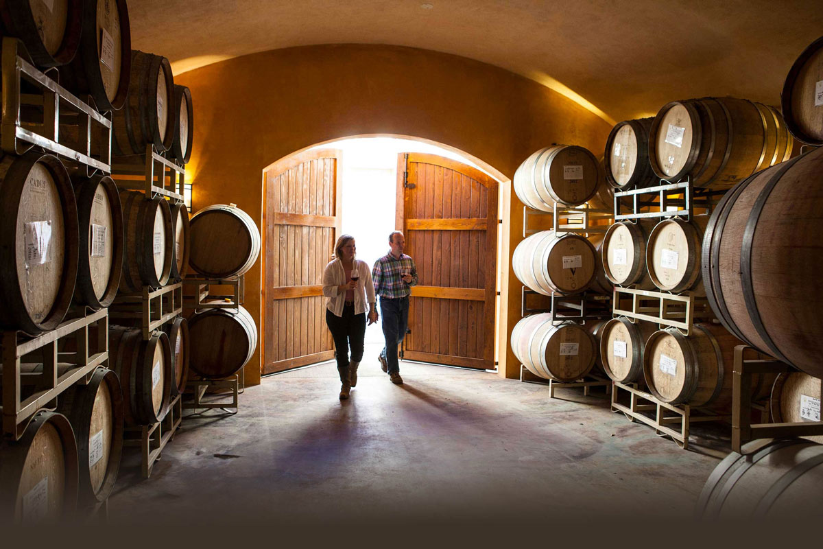 Oregon wineries with Barrel Caves