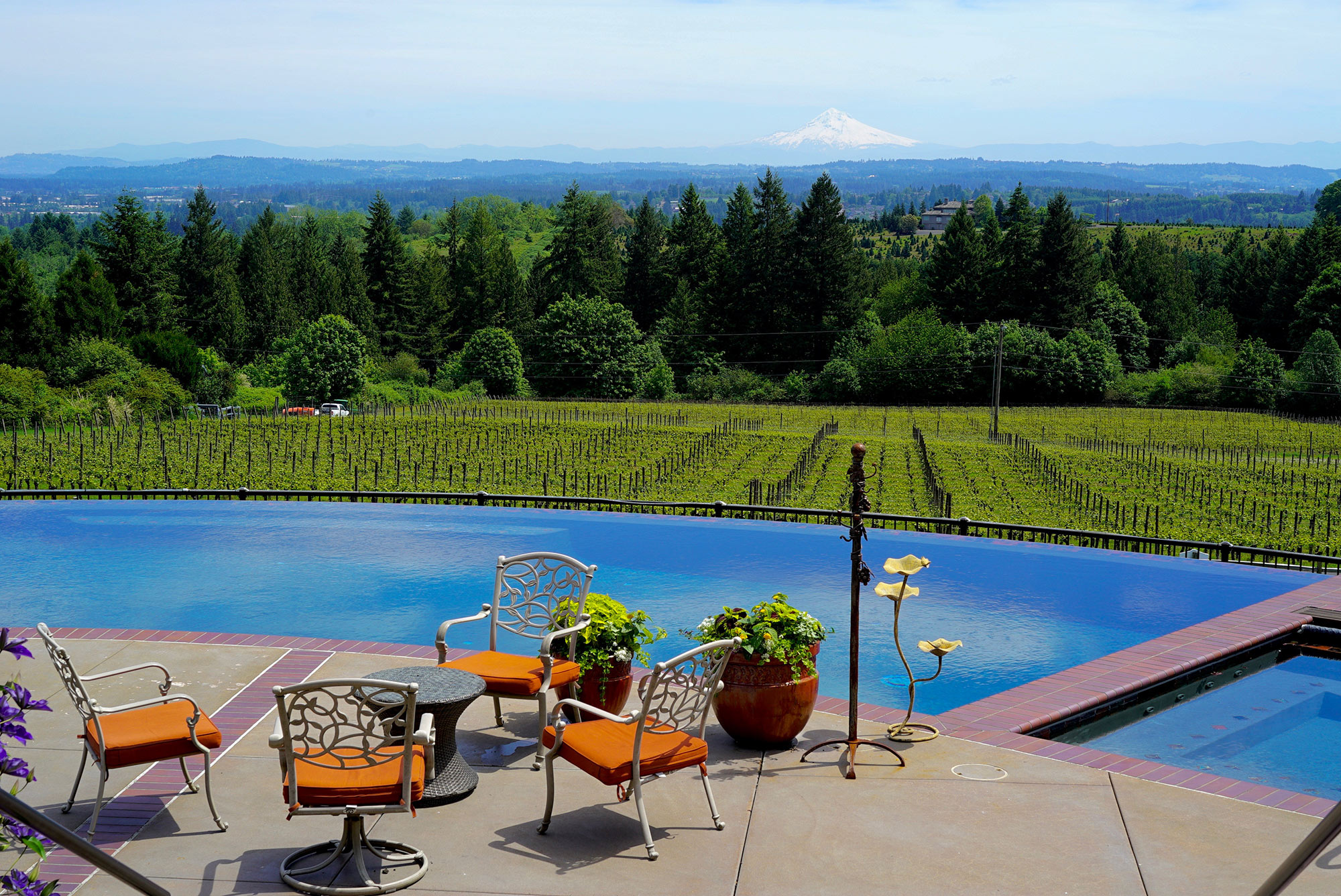 Blakeslee Vineyard Estate Pool Mt Hood
