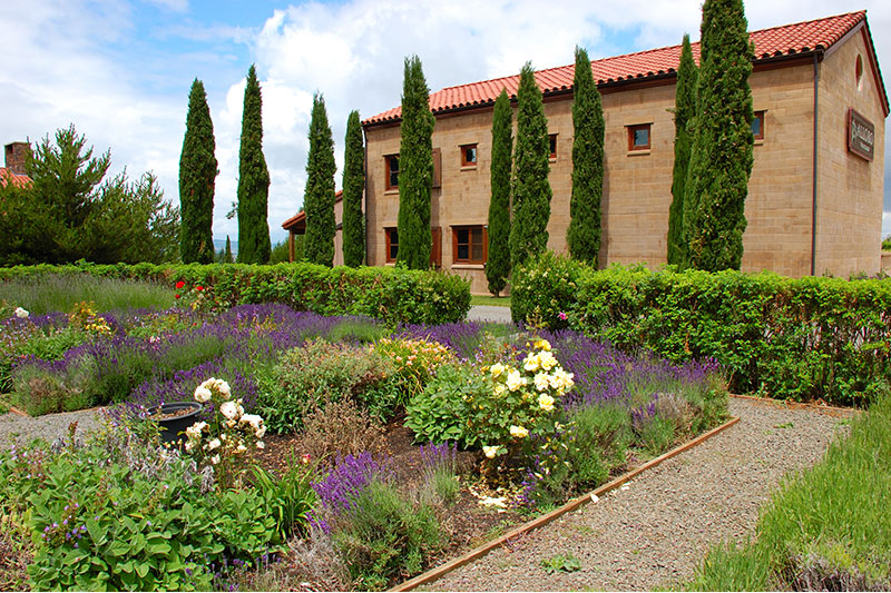 Oregon Wineries with Bocce Ball Alloro