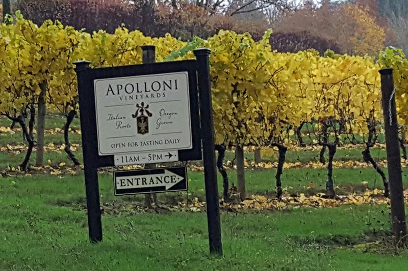 Oregon Wineries with Bocce Ball Apolloni