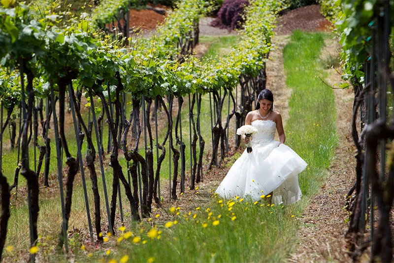 Oregon Winery Wedding Venues - WineryHunt Oregon