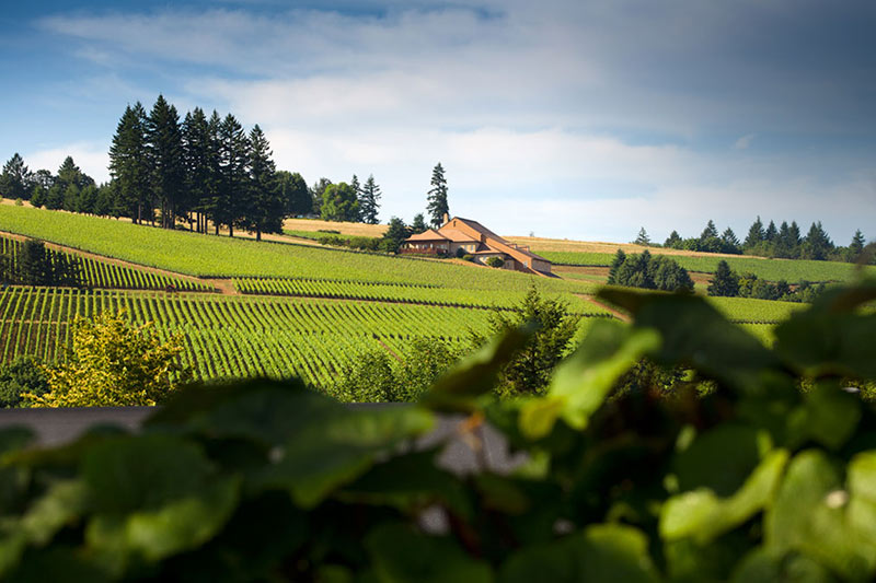 Oregon Wineries with Electric Vehicle Charging Domain Drouhin