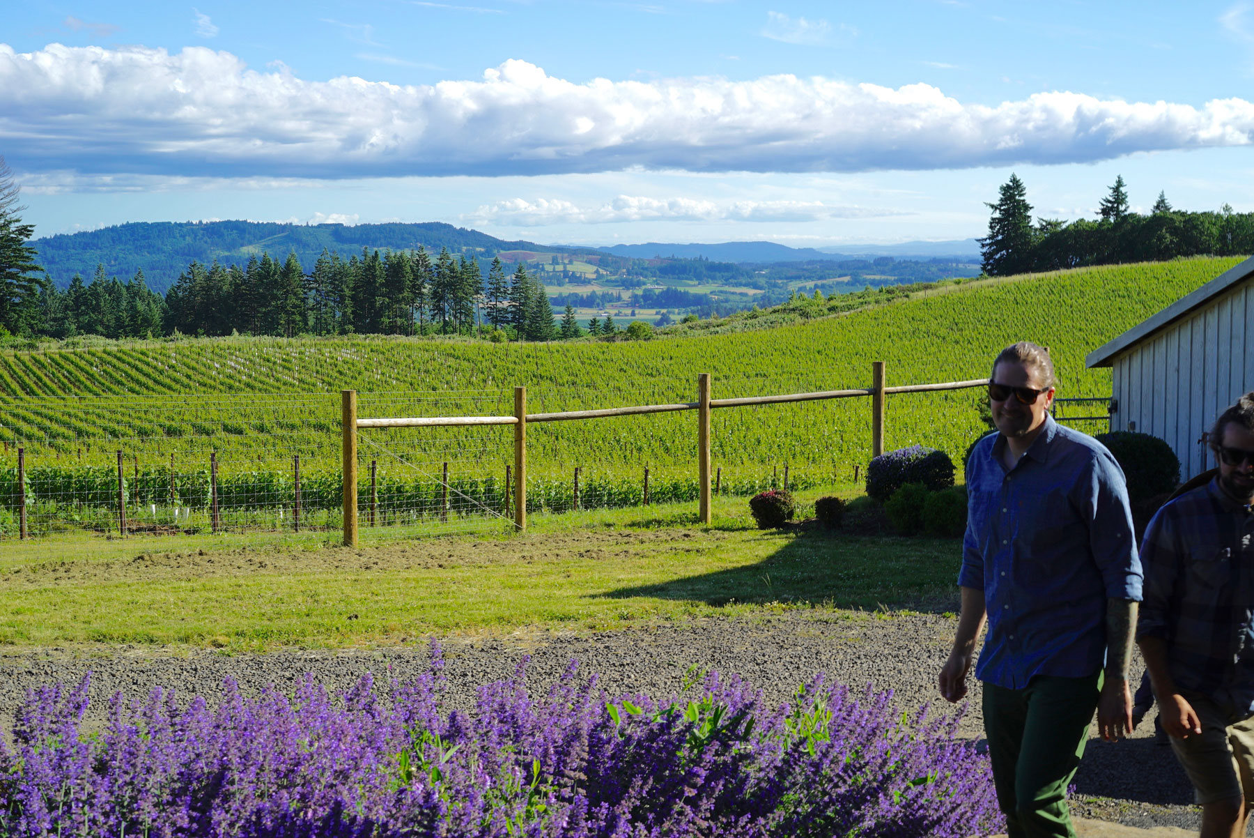 Best wine tasting experience Oregon