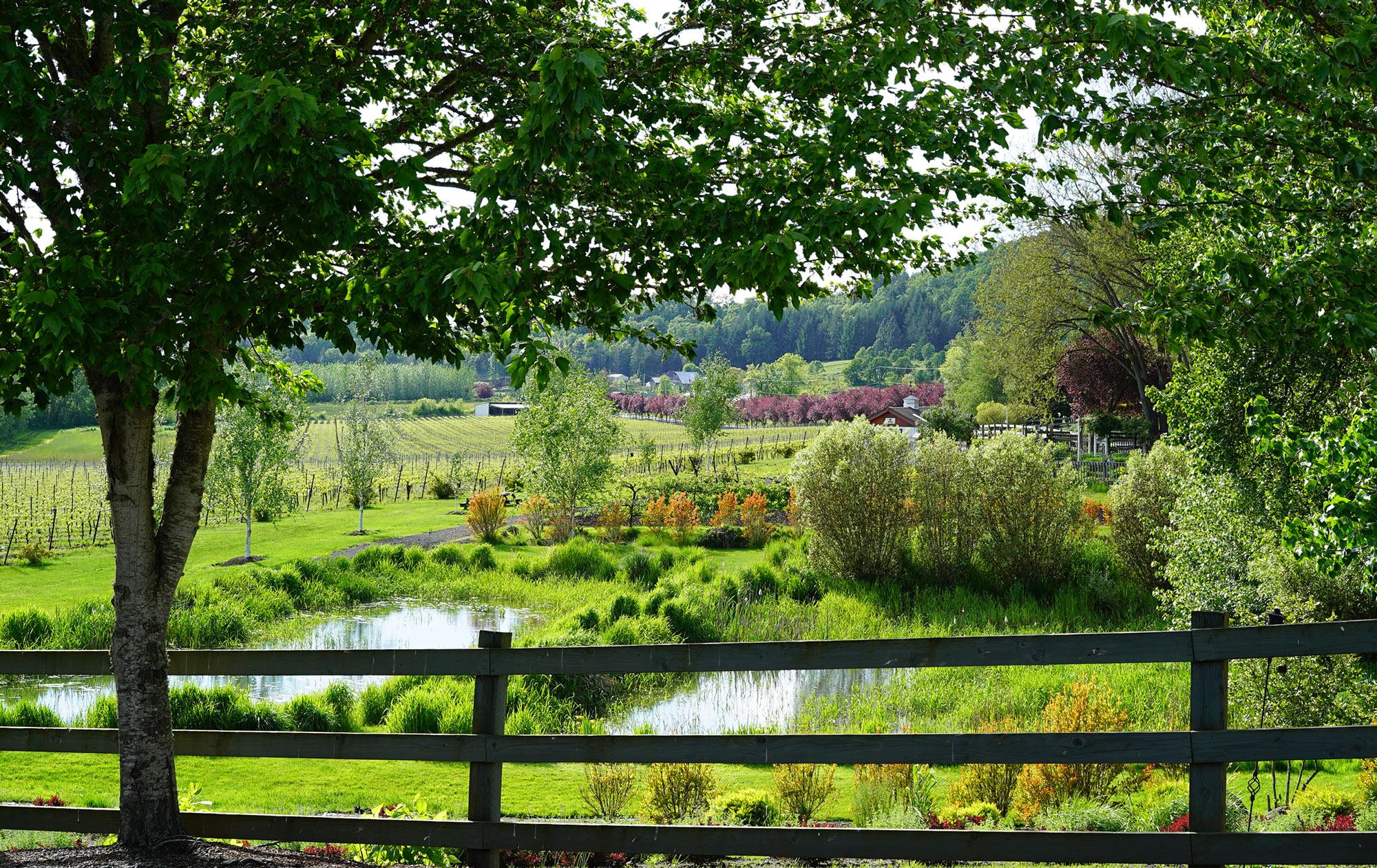 Keeler Estate Vineyard biodynamic wine tasting tour