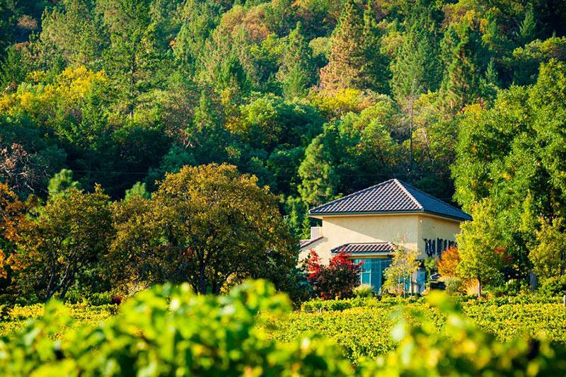 DANCIN winery across the vineyards